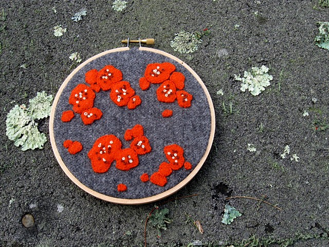 Red orange wool lichen applique and embroidery by chelsea clarke