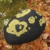 Fieldstone Pillow Green #1