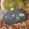 Fieldstone Pillow Green #2