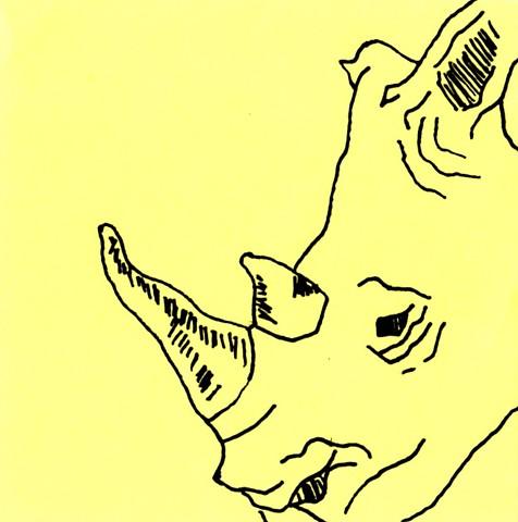 Rhino Frame 34