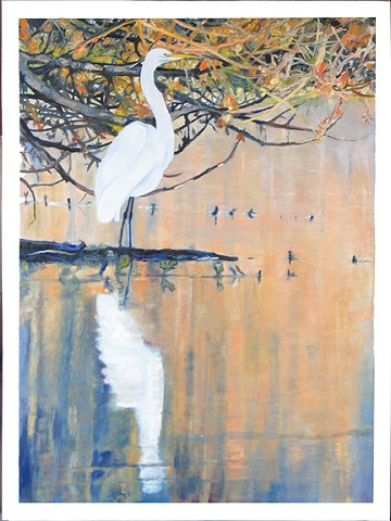 Early Morning Egret
