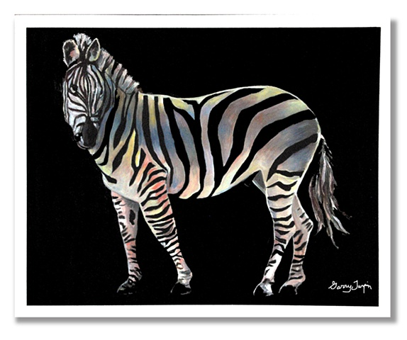Rainbow Zebra Two