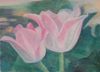 Tulip Couple