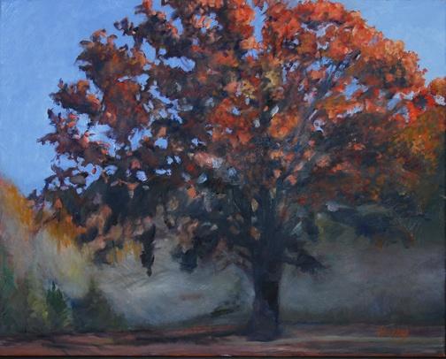 Sundown Oak