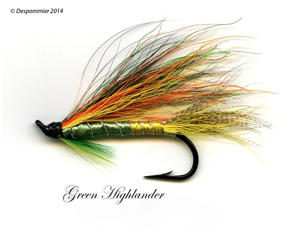 Dickson Despommier, Duncan Salmon Flies