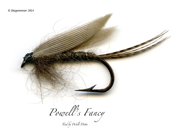 Dickson Despommier, Dette Trout Flies