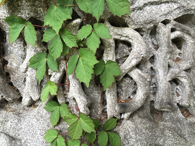 Doug Clouse, Vines growing over lettering in the Rustic style, Woodlawn Cemetery