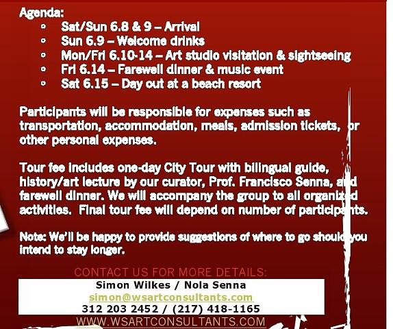 Brazil Art Tour 2013