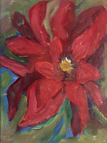 various tones of deep red create the luxurious and glowing petals of a poinsetta