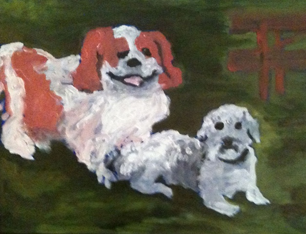 "This dog ""pals""--a Cavalier King Charles Spaniel and a Lasapoo, enjoy a summer day at the park."