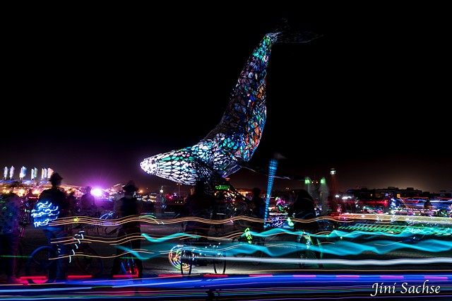 Burning Man, Burning Man 2016, Space Whale, Light Trails, Burning Man at Night, Whale