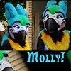 Molly Parrot