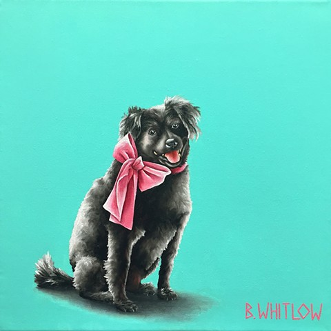 "Black Rescue dog pet portrait by Beth Whitlow.  ""Wear it with confidence or don't wear it at all."" - Sister"