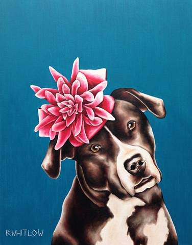 """This Alabama farm girl only dresses up for two occasions: the Tide playin' on Saturday and preachin' on Sunday."" - KC    Whimsical pet portrait by Beth Whitlow"