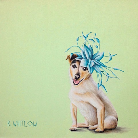 """I gave up my modeling career to become a house pet."" - Harper.  Whimsical Jack Russell Terrier JRT Pet Portrait by Beth Whitlow"