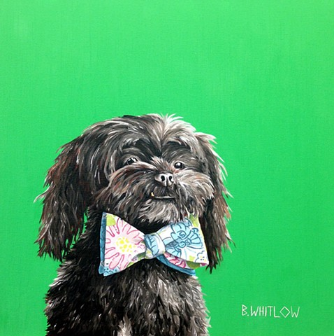 Shin tzu poodle mix whimsical pet portrait
