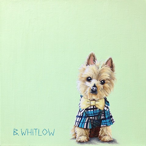 """You don't need a power tie when you have this jawline."" - Pepper.  Original pet portrait by Beth Whitlow."