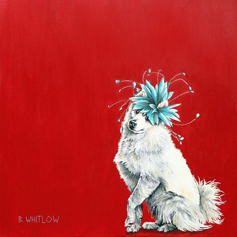 """I don't mean to flaunt it; it just happens."" - Niko  Custom whimsical american eskimo dog pet portrait"
