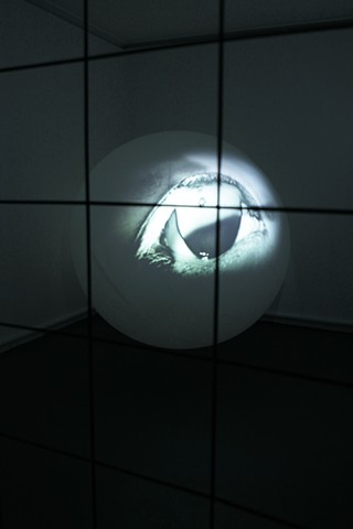 Flashing Eye_Installation View01