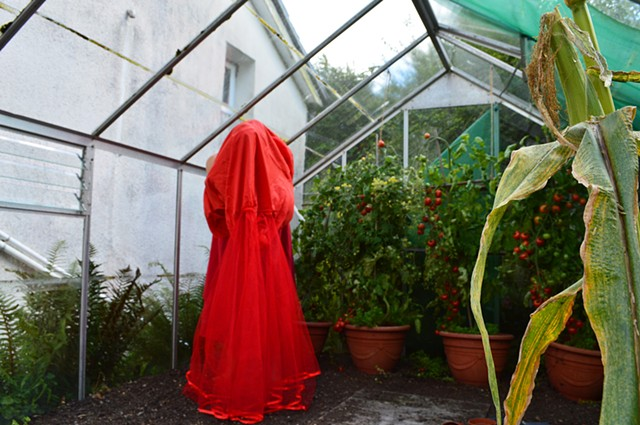 photograph of woman red dress tomatoes greenhouse in Wales by Robyn LeRoy-Evans
