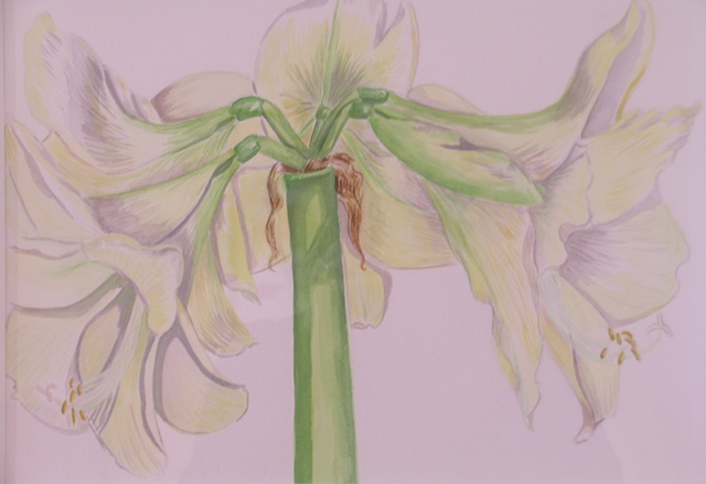 White Amaryllis, Triptych detail - center