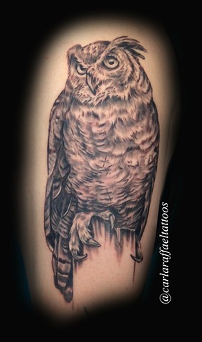 black and grey owl tattoo strange world tattoo calgary alberta canada
