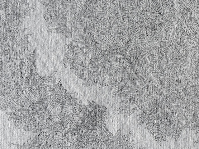 Aerilon (detail)