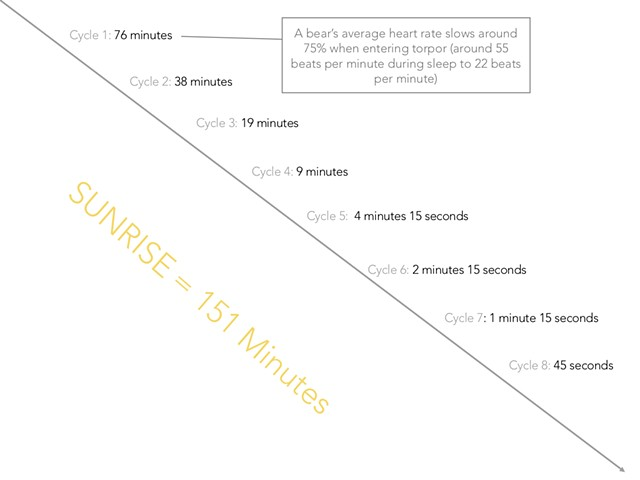 Internal Time Structure