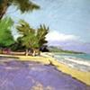 Tropical Beach2