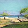 Tropical Beach4