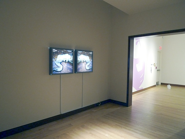 installation image, Visual Plastic