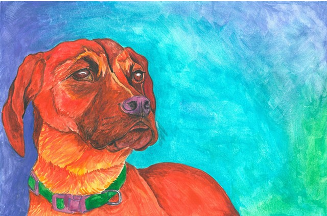 Sophie Boxer dog watercolor Donna Essig
