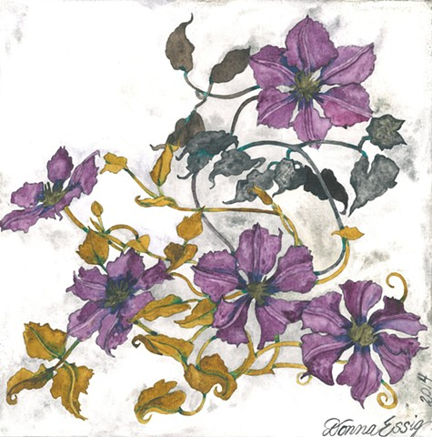 clematis flower watercolor