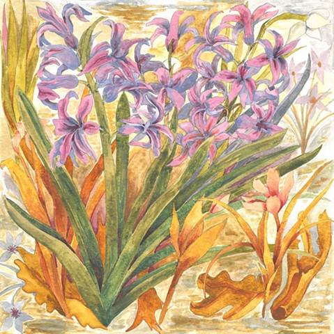 hyacinth flower watercolor Donna Essig painting