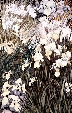 Donna Essig original watercolor painting white iris flowers