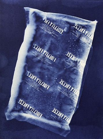 cyanotype photogram by Samantha Sethi