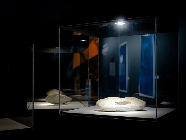 These fake fossils were produced using concrete to mimic rock forms and record the physical imprints of manmade replicas of nature.