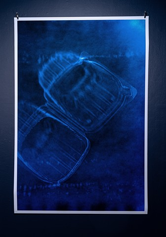 cyanotype photogram by Samantha Sethi at Creative Alliance