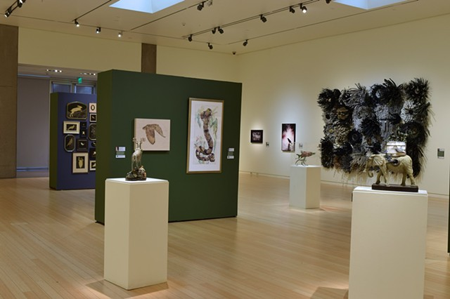 Flora and Fauna, Group Exhibition, Mesa Contemporary Arts Museum