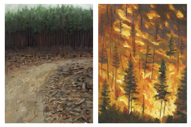 Diptych #4 (Clearcut and Wildfire)