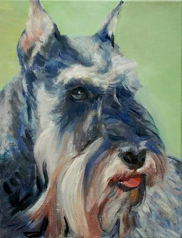 Dog art pet portrait painting of Schnauzer