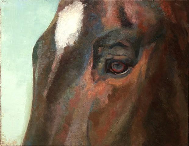 pet portrait oil painting of horse