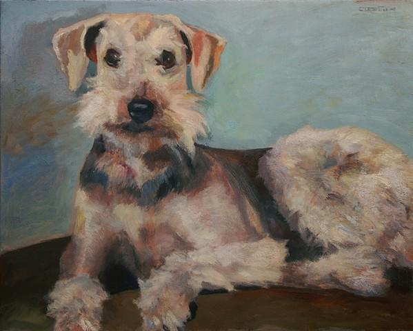 Gracie, portrait, pet, dog, airdale, oil painting