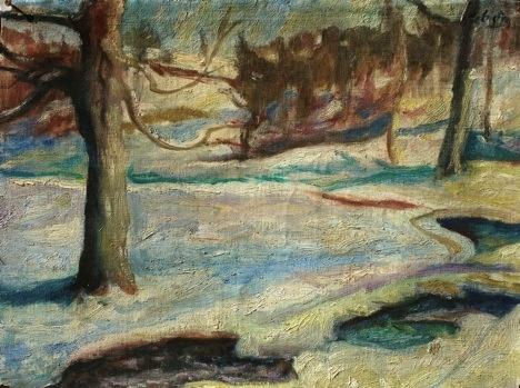 minnesota winter with stream
