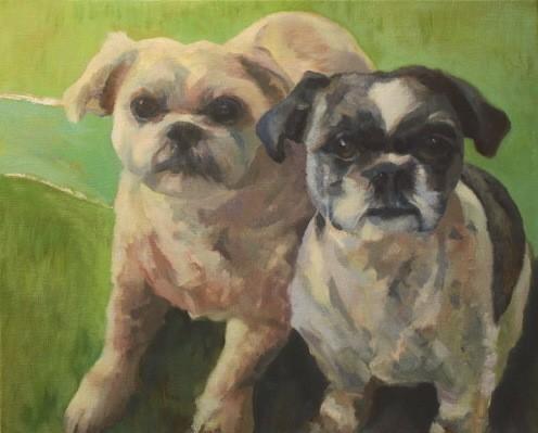 Dog art pet portrait painting of Shih Tzu dogs