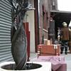 1st NYC Iron