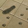 Bronze footprints, Sayer/Osborn, Pheonix ,Az
