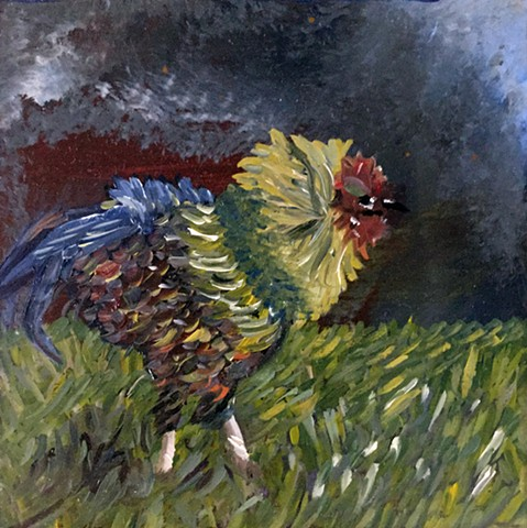 Storm Rooster