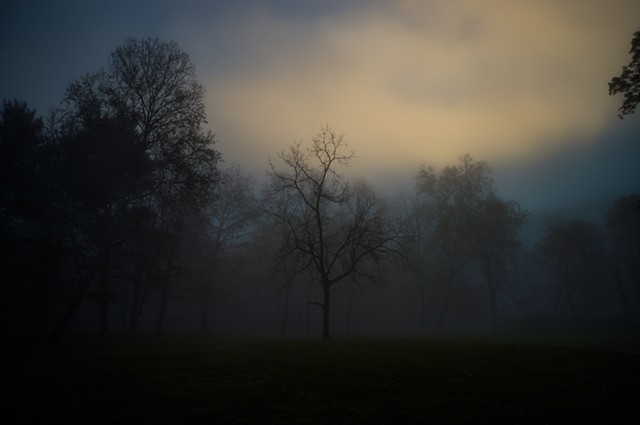 A blanket of fog in early morning, Clarkson, Ohio