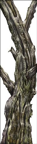Tree 8